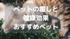 【癒しとペット】ペットの癒しと健康効果を解説!!おすすめ動物を紹介!!